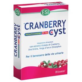 Cranberry Cyst ovalette: integratore alimentare per favorire il drenaggio dei liquidi e proteggere le vie urinarie